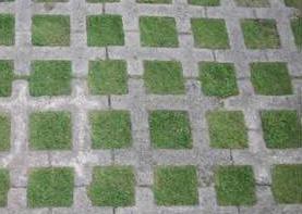 Acabado en pisos adoquines de concreto for Adoquines para jardin precio