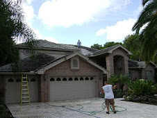 During Safe Non Pressure Roof Cleaning and Soft Wash Exterior Cleaning!