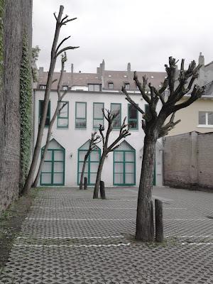 trees, slant