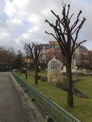 trees, bird cage,