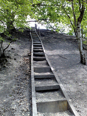 slag heap, woods,  stairs