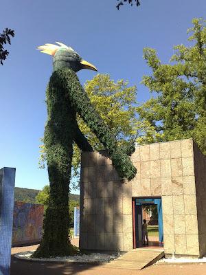 bird, ivy