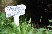 Gilly's garden