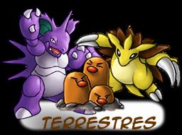 ---Tipos De Pokemons----- Terrestres
