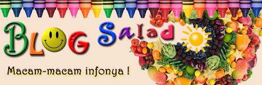Atika's Blog-Blog Salad