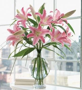 Martha stewart flower arrangements turnuoff for Martha stewart floral arrangements