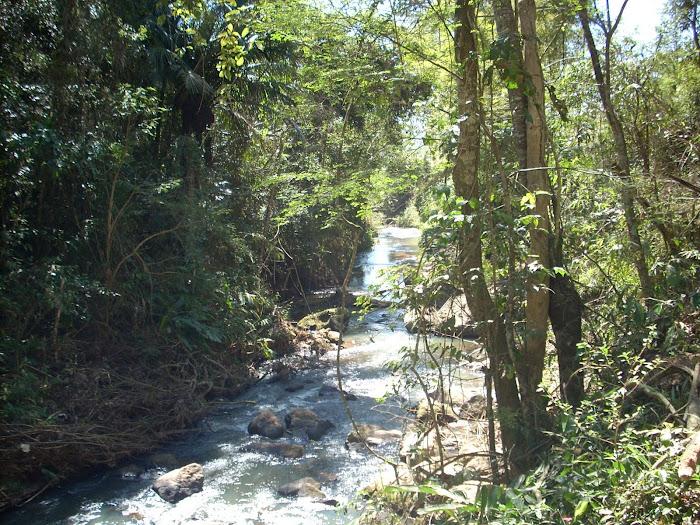Rio da Cascata