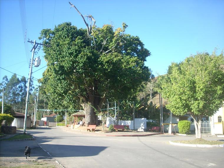 Praça da Sapucaieira
