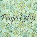 Project 365 Nov-Dec