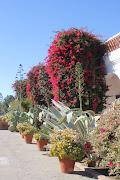 MISSION SAN LUIS REY DE FRANCIA (Oceanside, San Diego County, CA)