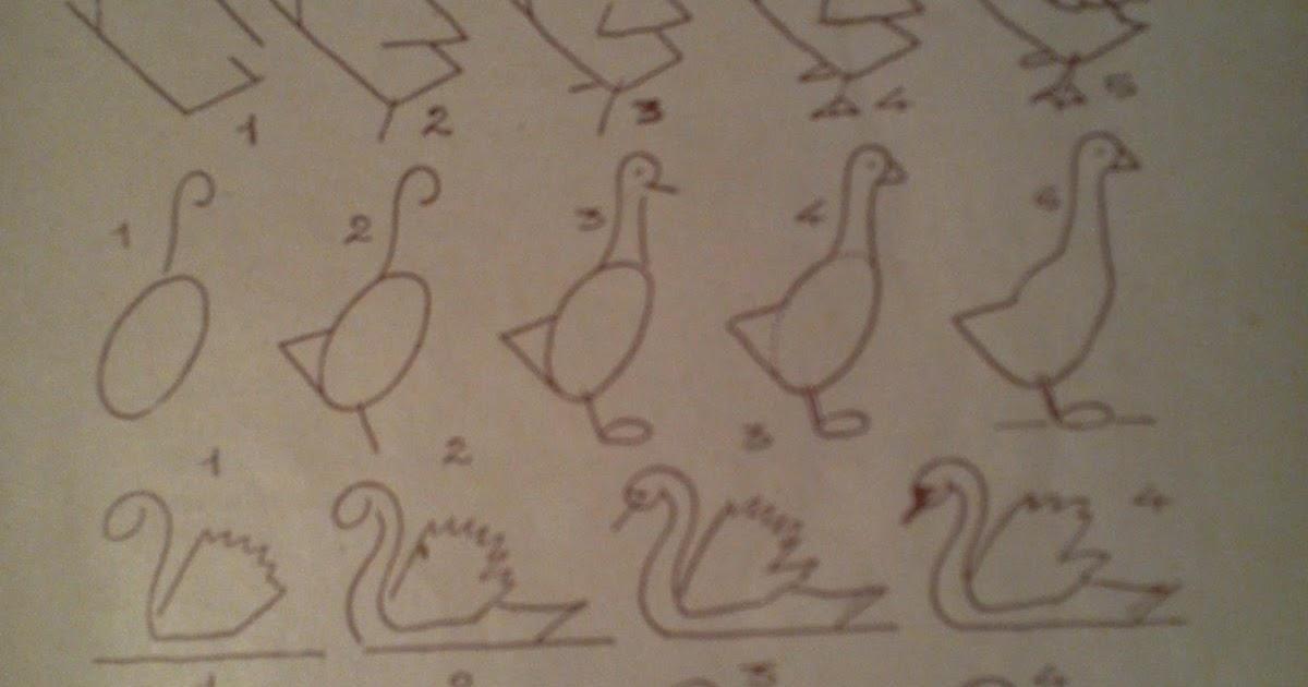 Dessins astuces pour debutants comment dessiner oies et - Dessiner une oie ...