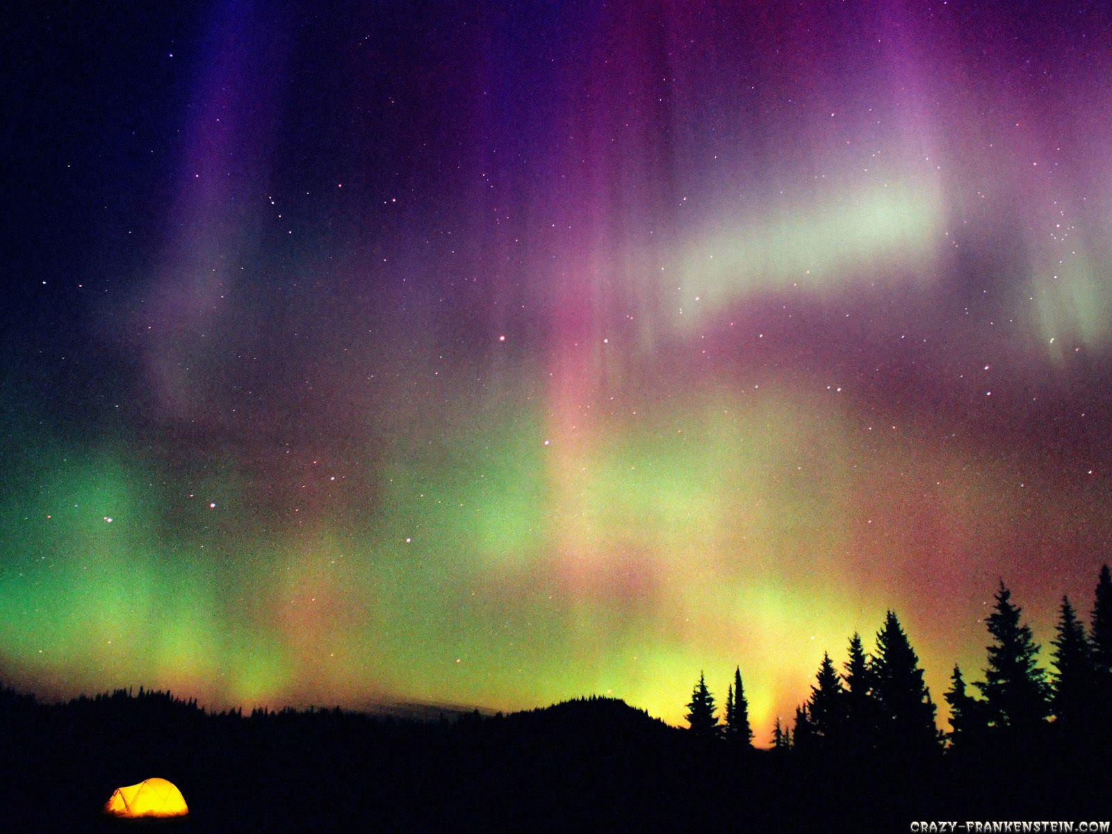 Aurora: Pictures