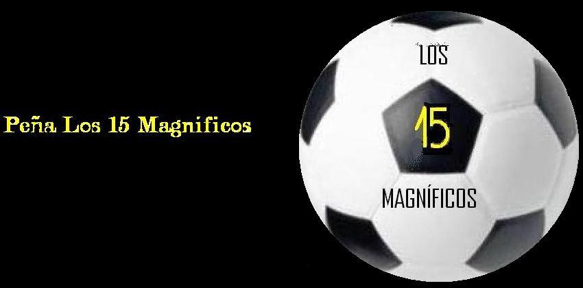 Los 15 Magníficos