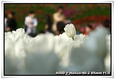 香港花卉展覽2010