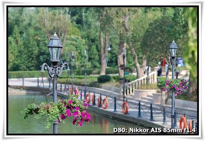 東部華僑城-茶溪谷度假公園-茵特拉根(Interlaken, Tea Stream Valley, OCT East)