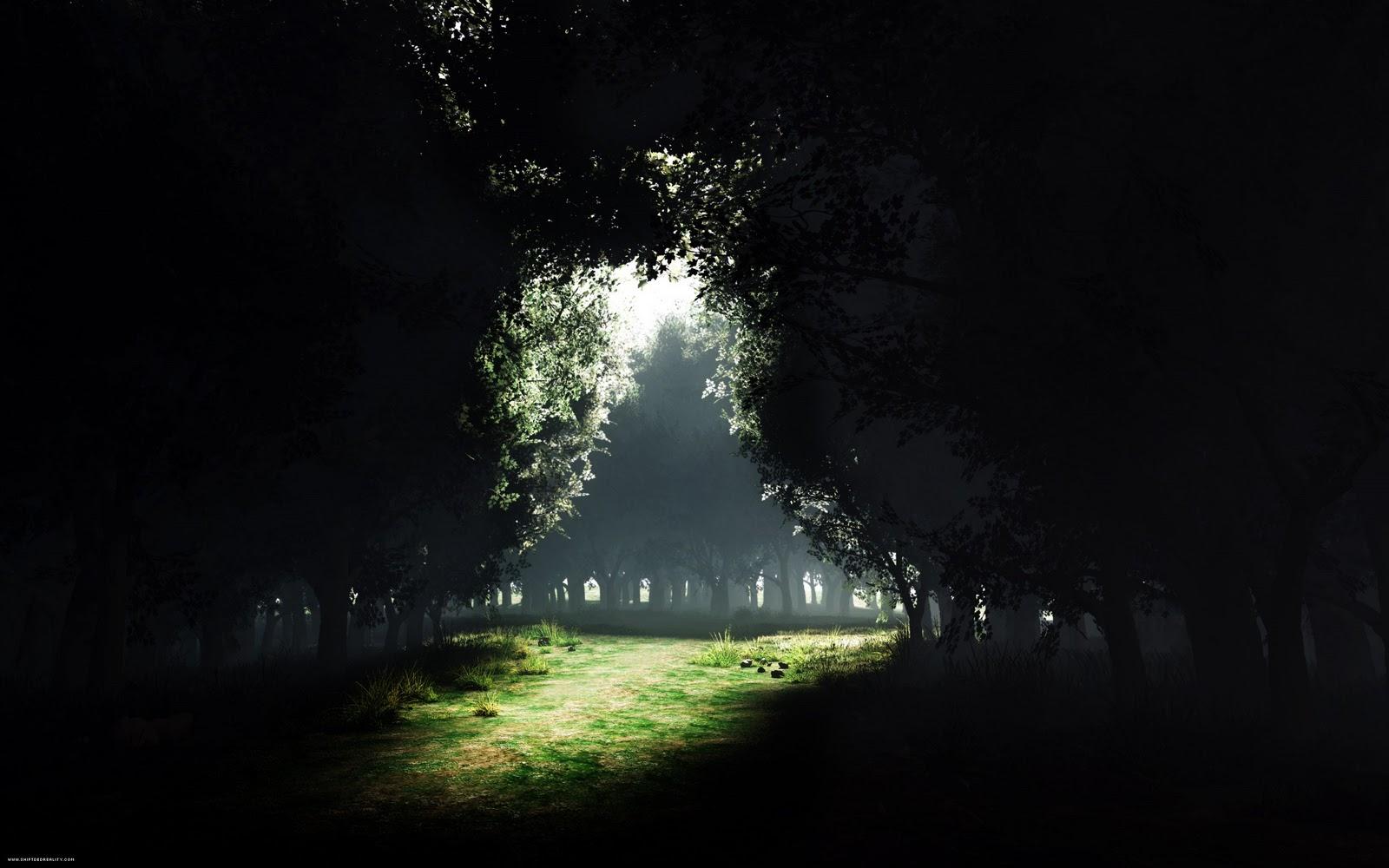 http://4.bp.blogspot.com/_sRGU_JXOz6E/TRfJrhSjjzI/AAAAAAAAAlc/SbLbd8rUCHk/s1600/Trees+Wallpaper_+%252811%2529.jpg