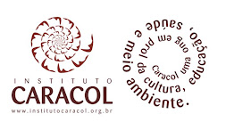 Instituto Caracol
