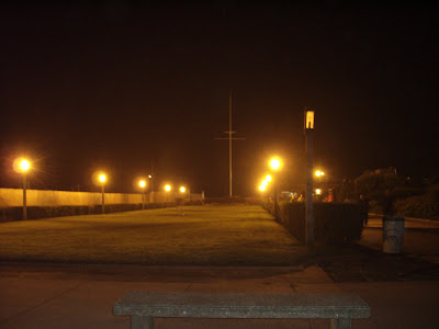 Grassy knoll in front of Jones Beach water tower.