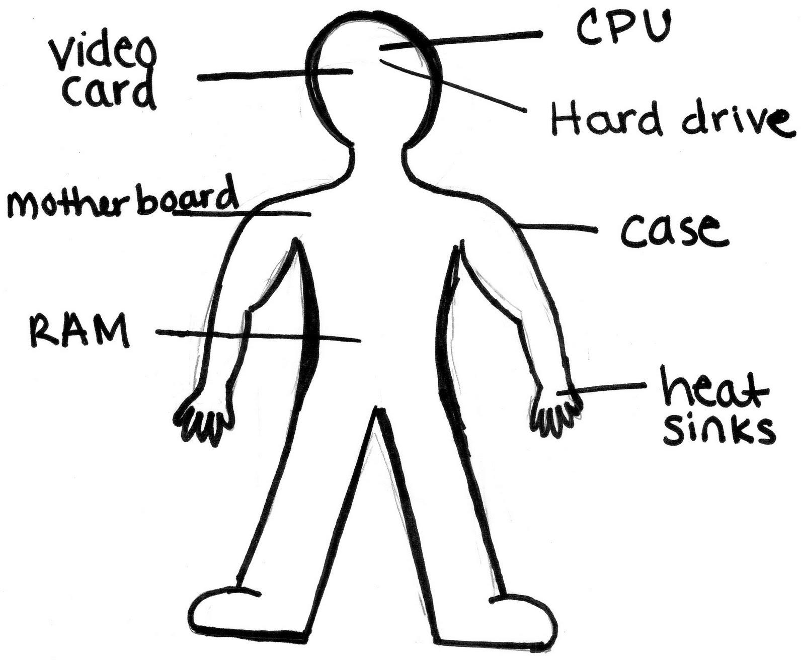 Amanda Basnight Ism3004 Tutorial 1 Computer Hardware Is Like A