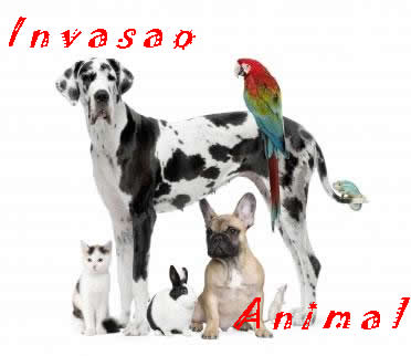 Invasao Animal