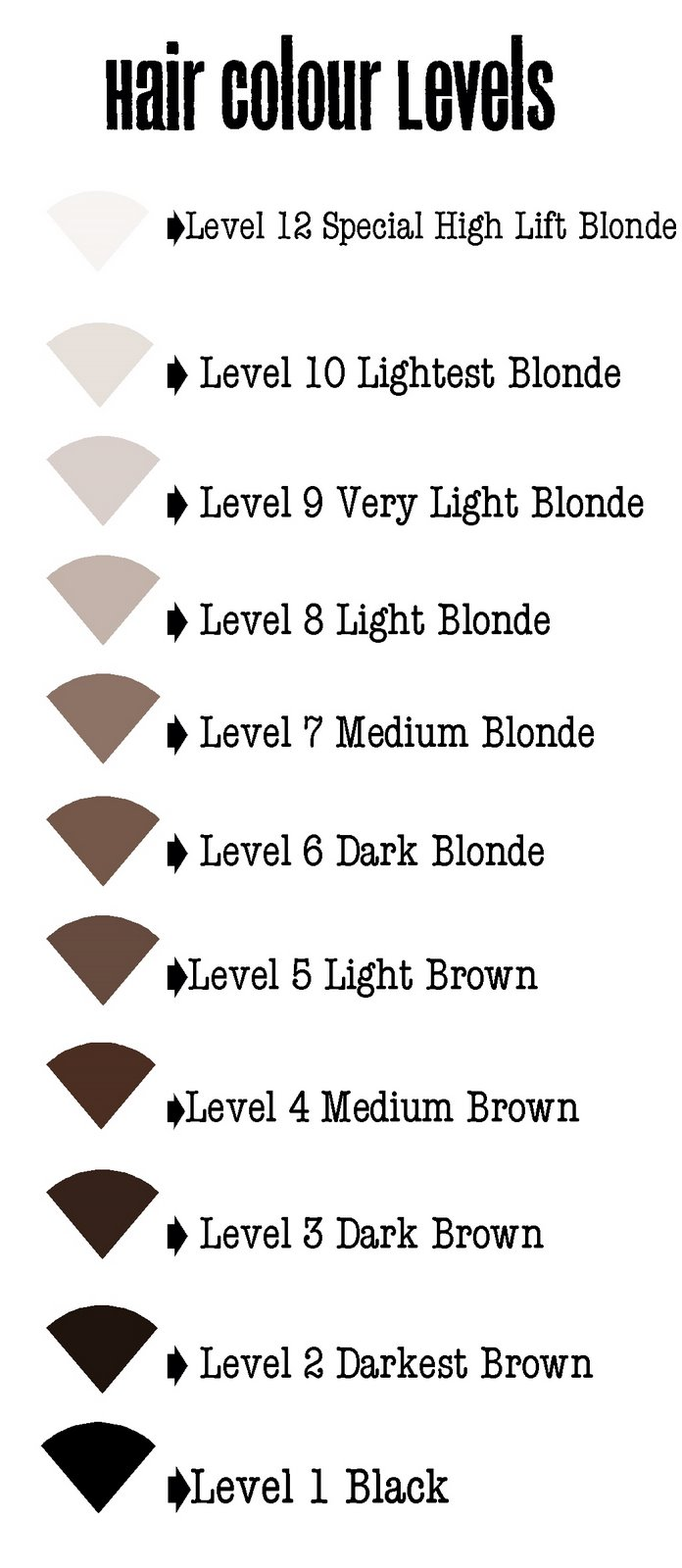 10 Hair Level Chart Bibliography Format Of Hair Color