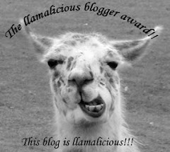 The llamalicious blogger award