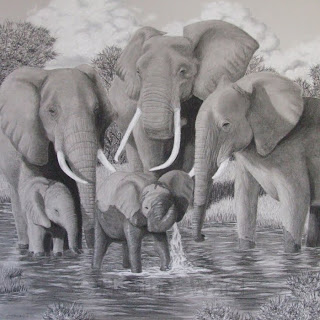 African elephant family charcoal drawing