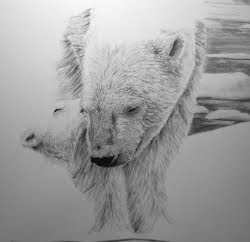 polar bear drawing in progress