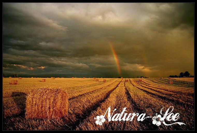Natura-Lee