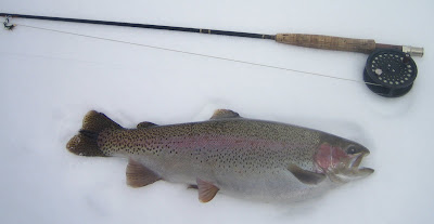 Steamboat Springs Winter fly-fishing