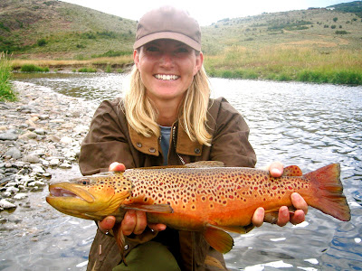 Steamboat springs steamboat fly fishing brown trout for Yampa river fishing report