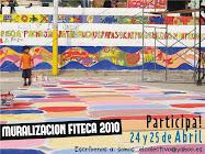 FITECA 2010 - muralizacion