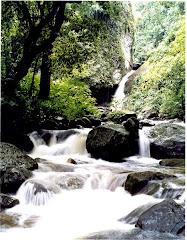 Cachoeira Furna da Onça...