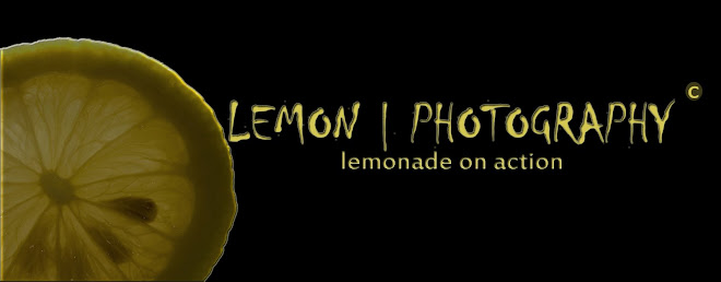 Lemon | Photography
