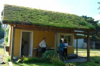 Empresa telhado verde