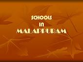Schools in Malappuram