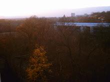 Dalla mia finestra