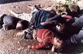 Attack on Halabja