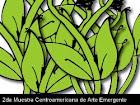 arte emergente centroamericano