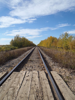 A railway in Sturgeon county near Tipi Creek Farm