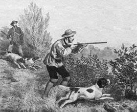 """Γαλλικό σπανιέλ  Ο απόγονος των φημισμένων""""chien d'oysel"""