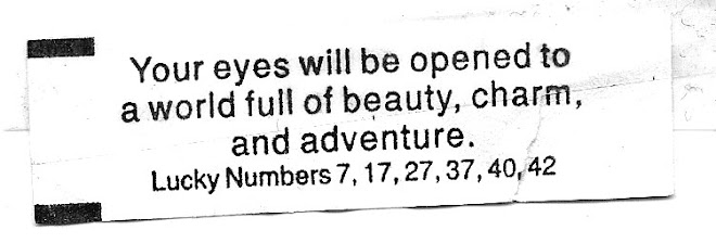 What I found in a fortune cookie before I left: