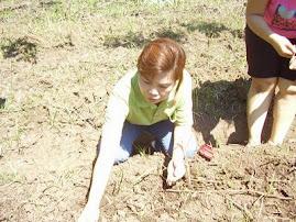 Acara Arboretum, 31 Maret 09