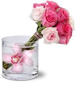 Minhas flores...Para apreciarem.