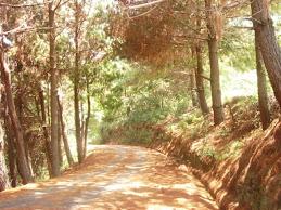 El Camino a Bajo Seco