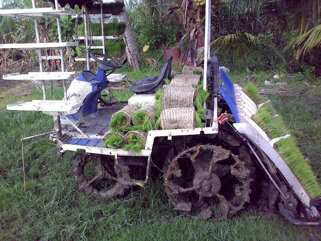mesin tanam padi