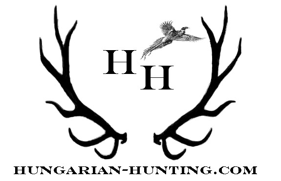 Hunting guide to Hungary, Pheasant hunting, hare hunting