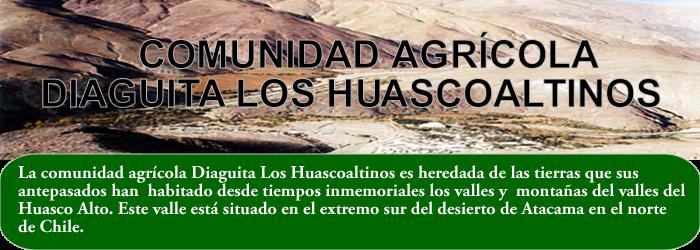 COMUNIDAD AGRÍCOLA DIAGUITA LOS HUASCOALTINOS