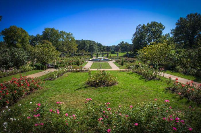 Hyperblogal Loose Park Rose Garden