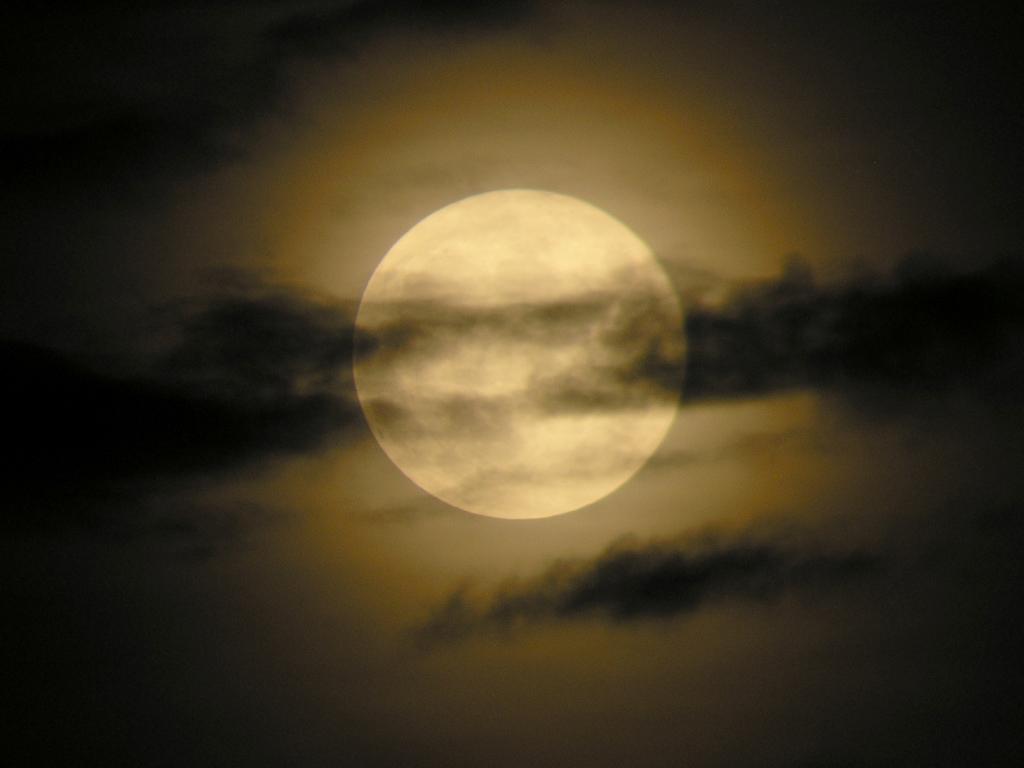 Grupo 11 per odo de luna llena octubre 2010 for En que luna estamos